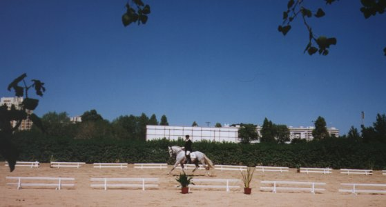 Jerezano competing at Campo Grande in Lisboa